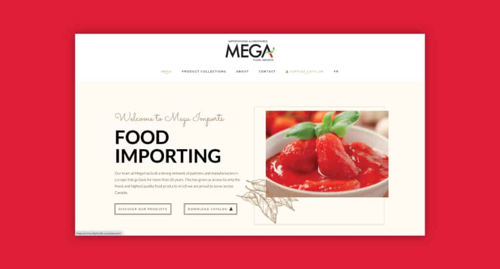 One of 2point0media's clients, Mega Importing website.